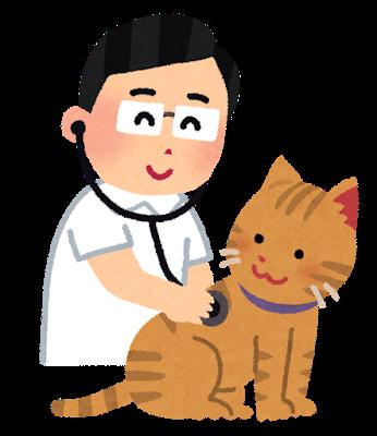 獣医の先生