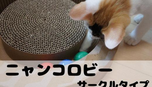 【レビュー】ニャンコロビーサークルタイプ!猫が勝手に遊んでくれるおもちゃです!