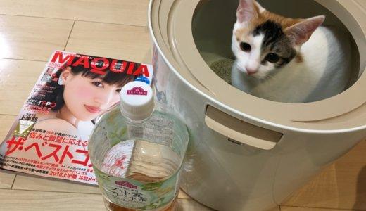 【レビュー】「上から猫トイレプチ」数日使ってみての感想!サイズ感とか参考になればと思います!