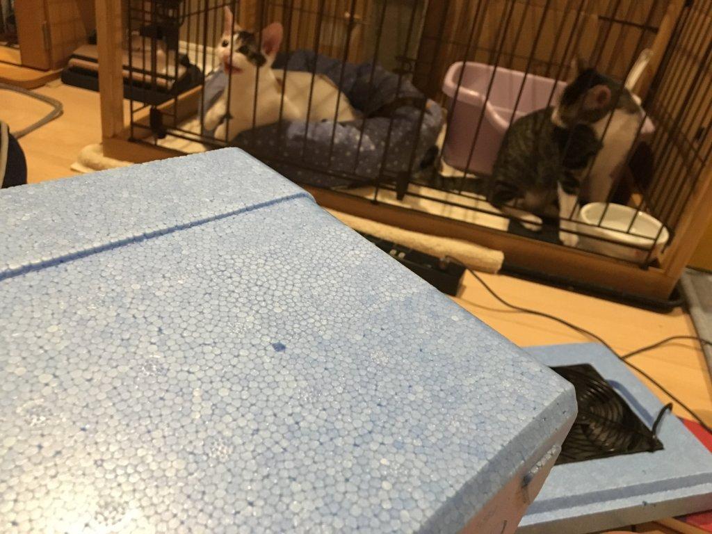 自作 DIY クーラー 猫用 送風口