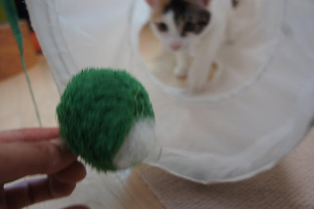 IKEA トンネル 猫用 おもちゃ ボール