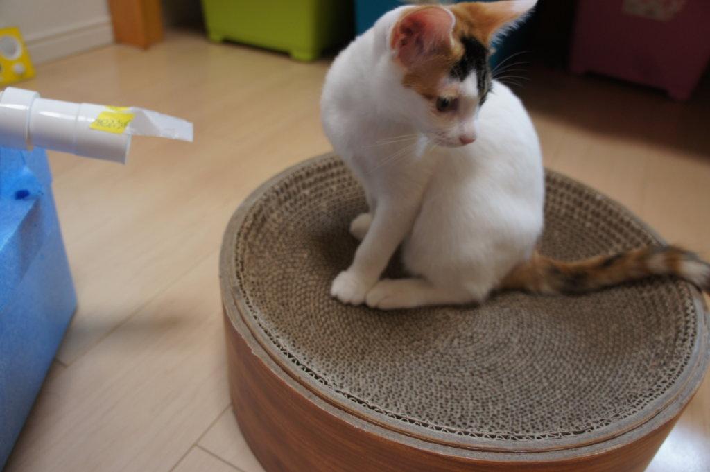 猫用 DIY 自作クーラー 送風口 ホース