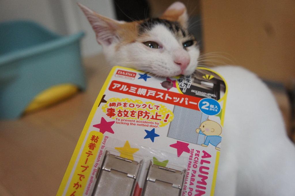 網戸ストッパー ダイソー 猫 脱走防止 対策 あめ 三毛猫