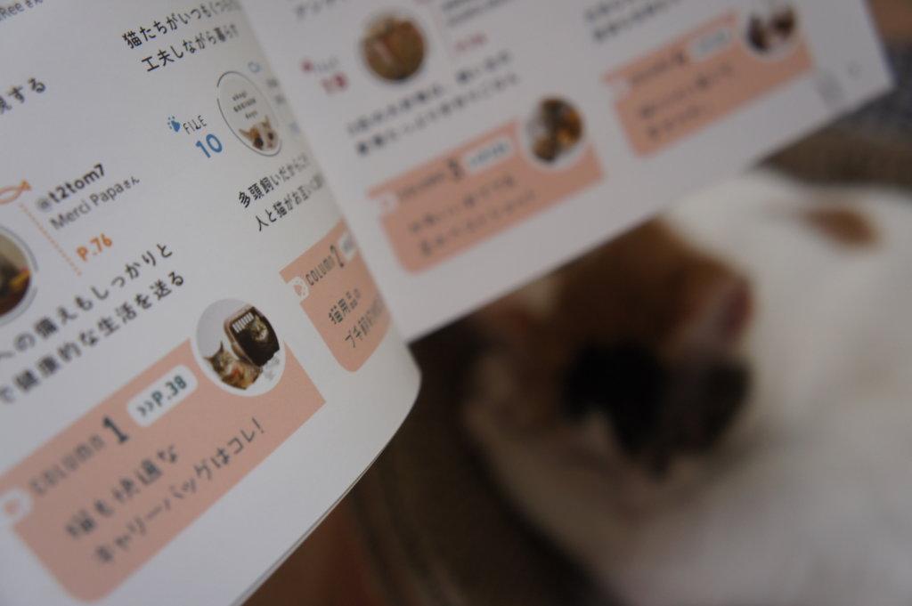 コラム わたしたちの猫暮らし 本 三毛猫 インスタグラマー ニャンスタグラマー