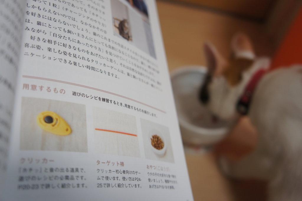 遊びのレシピ 三毛猫 あめ クリッカー