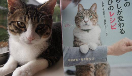 【書評】「猫との暮らしが変わる遊びのレシピ」を読んだ感想!遊びのレシピとは?