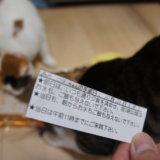 去勢 避妊 手術 猫 入院 三毛猫 キジ白