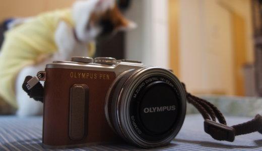 撮影機材に「OLYMPUS PEN E-PL8」が仲間入り!カメラ女子デビューにぴったりのミラーレス一眼です!
