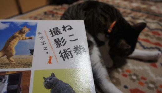 """【書評:ねこ拳撮影術】憧れの""""動きの有る猫の姿""""を撮影出来る方法がこの本の中に!!"""