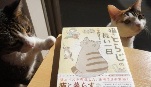 【書評:猫のとらじの長い一日】猫エイズキャリアと一緒に暮らしている以上避けれないお話。