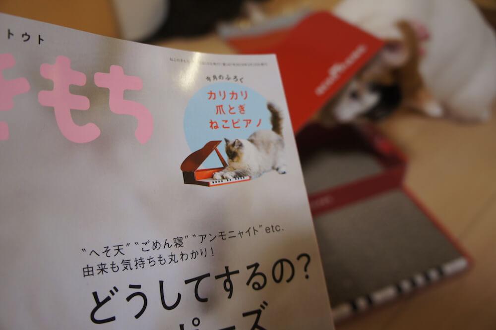 ねこのきもち 猫の気持ち 2019 04月号 購読 感想 爪とぎ ねこピアノ 付録