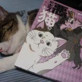 悪のボスと猫。 猫マンガ 感想 レビュー キジ白