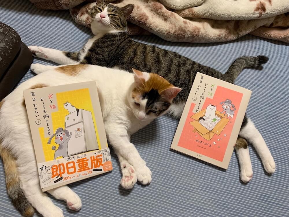 犬と猫どっちも飼ってると毎日たのしい 猫マンガ 犬マンガ Twitter