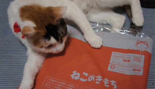 【ねこのきもち(2019/5月号)】付録は「愛猫のための防災対策BOOK完全版」