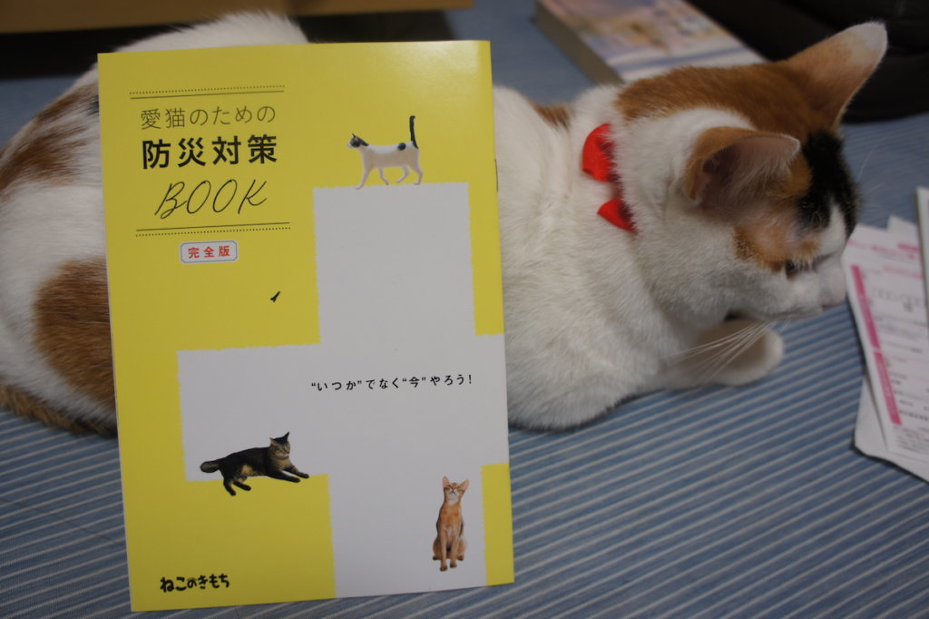 ねこのきもち 猫の気持ち 2019 05月号 購読 感想