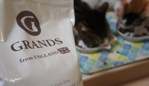 「GRANDS(グランツ)」キャットフードレビュー!ウチの猫に実際に食べてもらった感想です!