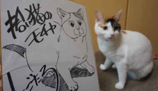猫の絵なら…にごたろ先生!拾い猫のモチャの感想記事などのまとめ!