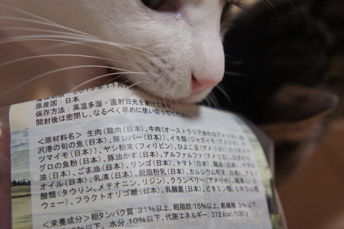 Regalie レガリエ キャットフード レビュー 猫 実際 感想 口コミ