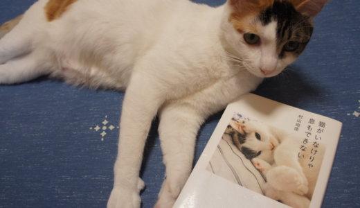 【書評:猫がいなけりゃ息もできない】猫と生きてきたとある作家さんのお話。