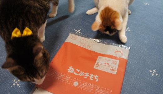 【ねこのきもち(2019/7月号)】付録は「猫にNGな食べ物ポスター」・・・正直過去最高に微妙。