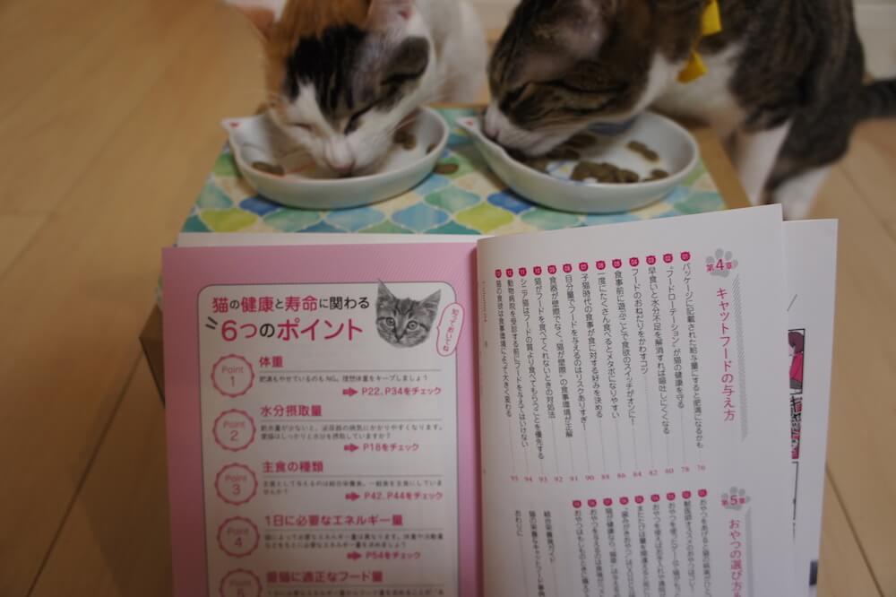 目次 猫 本 感想 口コミ レビュー 猫の寿命は8割がごはんで決まる! 寿命 8割 書評
