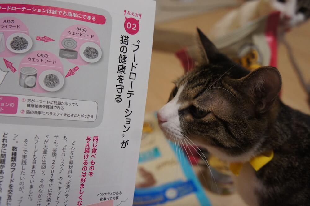 猫 本 感想 口コミ レビュー 猫の寿命は8割がごはんで決まる! 寿命 8割 書評 フードローテーション
