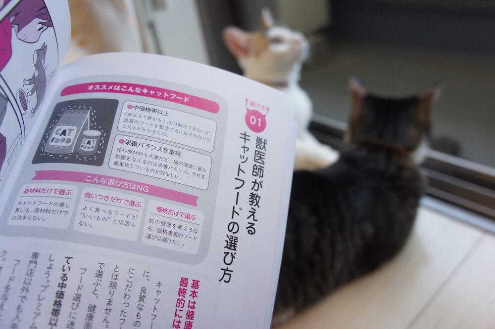 猫 本 感想 口コミ レビュー 猫の寿命は8割がごはんで決まる! 寿命 8割 書評