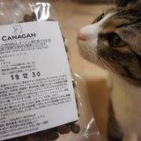 canagan カナガン プレミアムキャットフード レビュー お試しパック 猫のご飯 三毛猫 キジ白