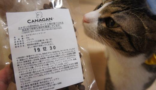 「CANAGAN(カナガン)」プレミアムキャットフードの先駆け!?気になるご飯の試供品をレビューします!