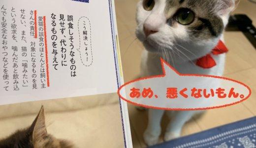 猫の誤飲対策は難しい・・・ちなみに「ウールサッキング」じゃなくて「ウールチューイング」らしい。