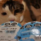 犬猫用 ヨーグルト 猫 ペットライブラリー ペットショップ限定 店頭販売 おやつ
