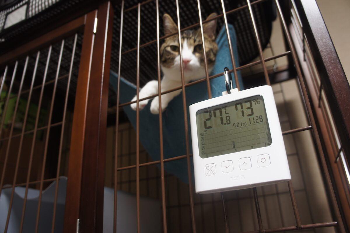 温度 湿度 変化 グラフ タニタ TANITA 温湿度計 TT-580 データロガー ロガー ペット 留守番オススメ