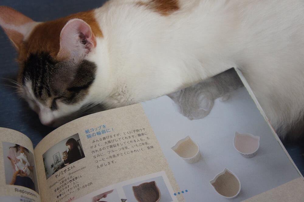 ねこのきもち 猫の気持ち 2019 08月号 購読 感想 猫 オモテニャシ OMOTENYASHI