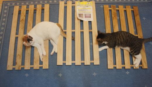 【猫DIY】シンクカバーのすのこにウレタンニスを塗って防水コーティング! ※閲覧注意!カビ写真有り!