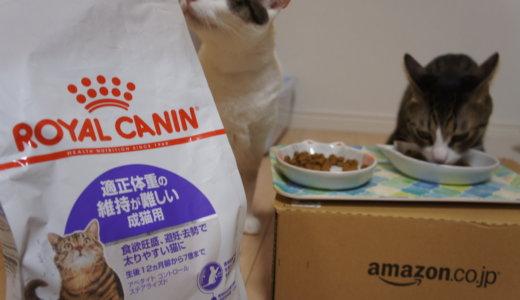 「ロイヤルカナン適正体重の維持が難しい成猫用」でダイエット!ロイカナ韓国工場についてもちょっと。