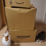 Amazon プライムデー アマゾン 買ったもの ペット用品 猫用品