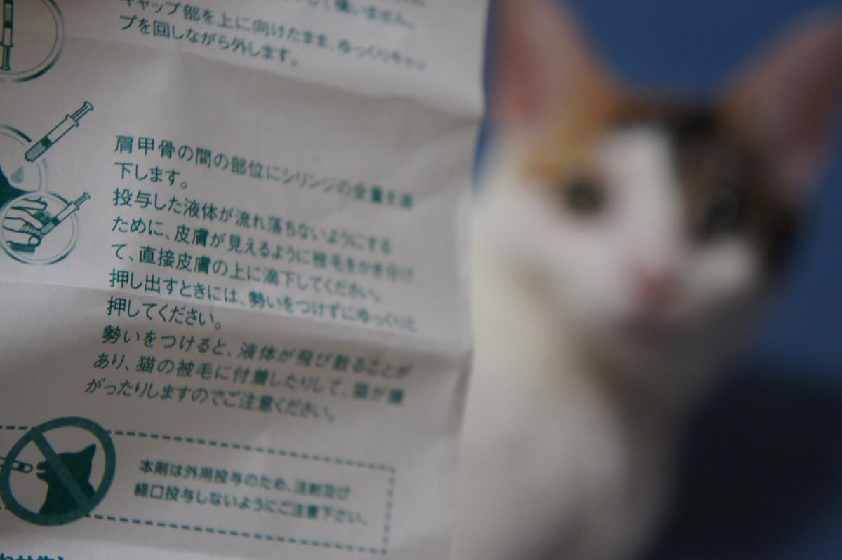ブロードライン 駆虫 防虫 ノミ ダニ 猫 薬 ペット レビュー 動画