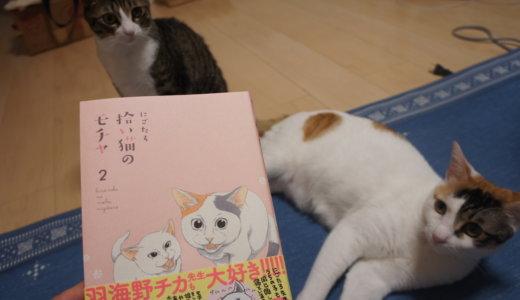 【書評:拾い猫のモチャ2】今度の主役はミルク&お父さん!?2巻は書き下ろしも満載です!