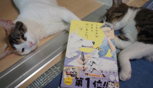 【うちの犬が子ネコ拾いました。第2巻】大きな不安要素も無くペリタスとキップ&マロの穏やかな日常な日々!