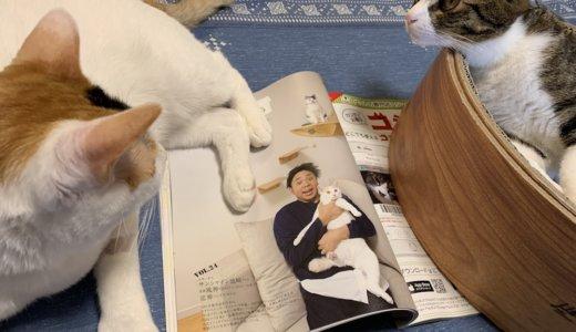 猫好きなサンシャイン池崎さんの超悪口なTwitter裏垢が話題!風神ちゃん雷神くんに対しての本音が・・・