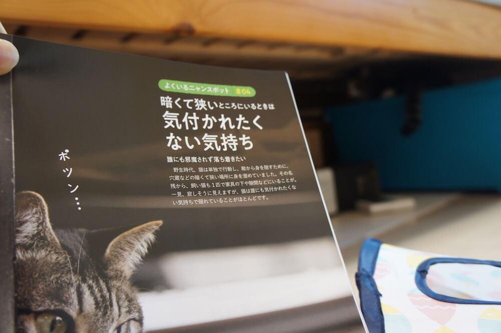 ねこのきもち 猫の気持ち 2019 09月号 購読 感想 猫