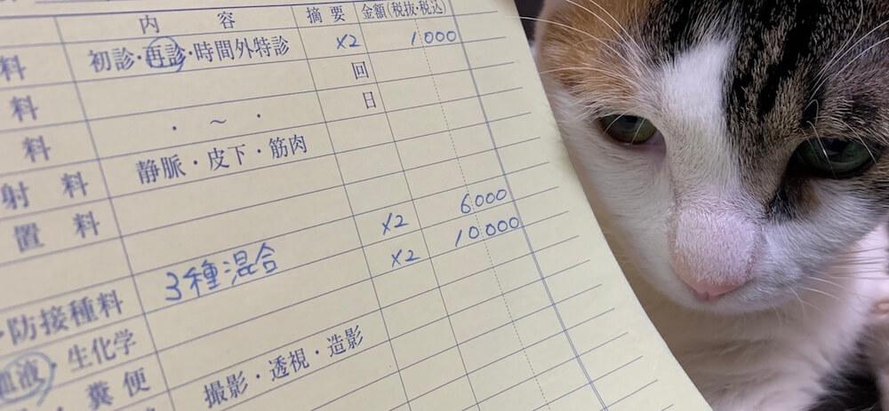 猫 ワクチン コアワクチン 3種混合 費用 料金
