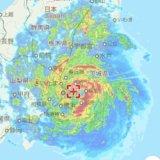 台風15号 関東直撃 関東上陸 被害 三毛猫 キジ白 猫の様子