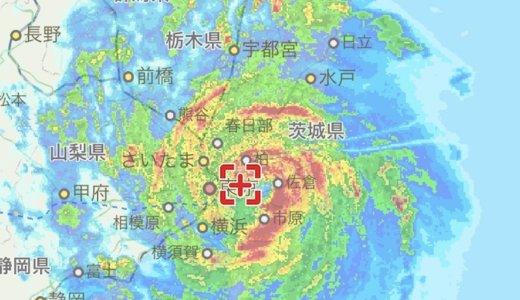 大型台風15号襲来!三毛猫「あめ」とキジ白「つゆ」の反応はいかに!?