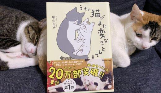 【うちの猫がまた変なことしてる。】猫も十人十色って思えます!(4匹しか出てこないけど。)