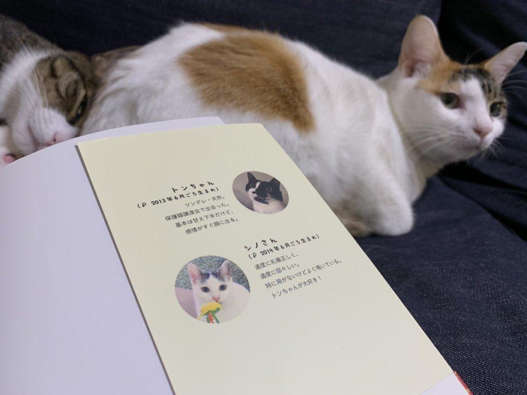 うちの猫がまた変なことしてる 卵山玉子 猫マンガ レビュー 感想 書評 三毛猫 キジ白