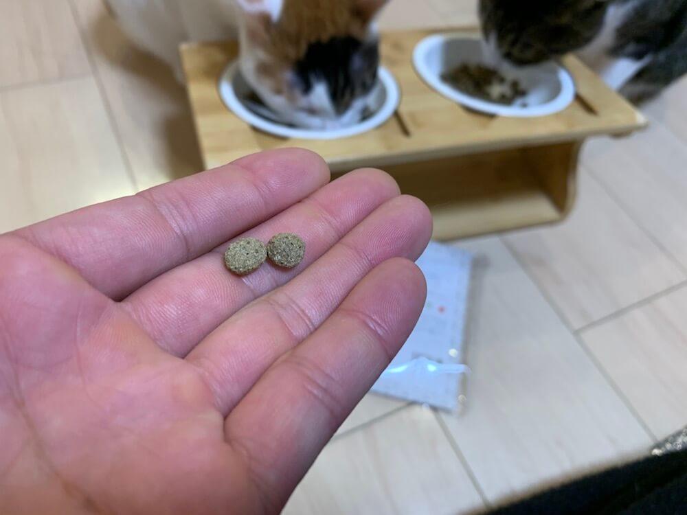 たまのおねだり レビュー キャットフード キジ白 三毛猫 tama Bonappetit(ボナペティ)ラム&フィッシュ 感想