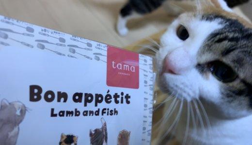 【tama Bonappetit(ボナペティ)ラム&フィッシュ】プレミアムキャットフード専門サイト「たまのおねだり」のオリジナルフードをあめつゆが食べてみたっ!