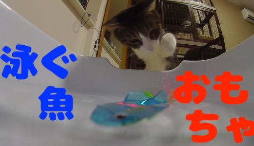 【レビュー】猫用おかさなおもちゃの感想です!リアルに水中を泳ぐ魚に猫達は興奮したのか?