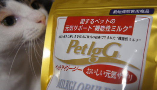【PetIgG(ペットアイジージー)】犬猫用機能性ミルクで免疫力アップ!?実際に飲んでもらった感想です!